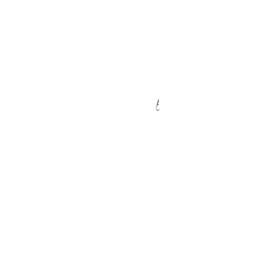Vintage Cult Rock